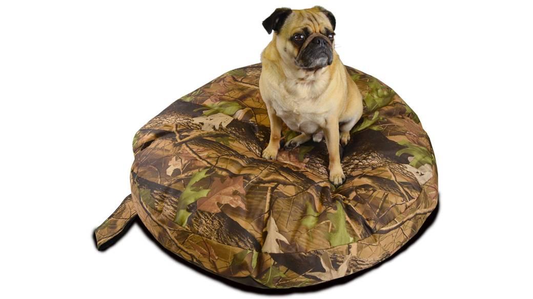 Dog Bed Fleas Clean