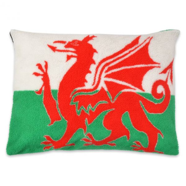Dragon-Cushion