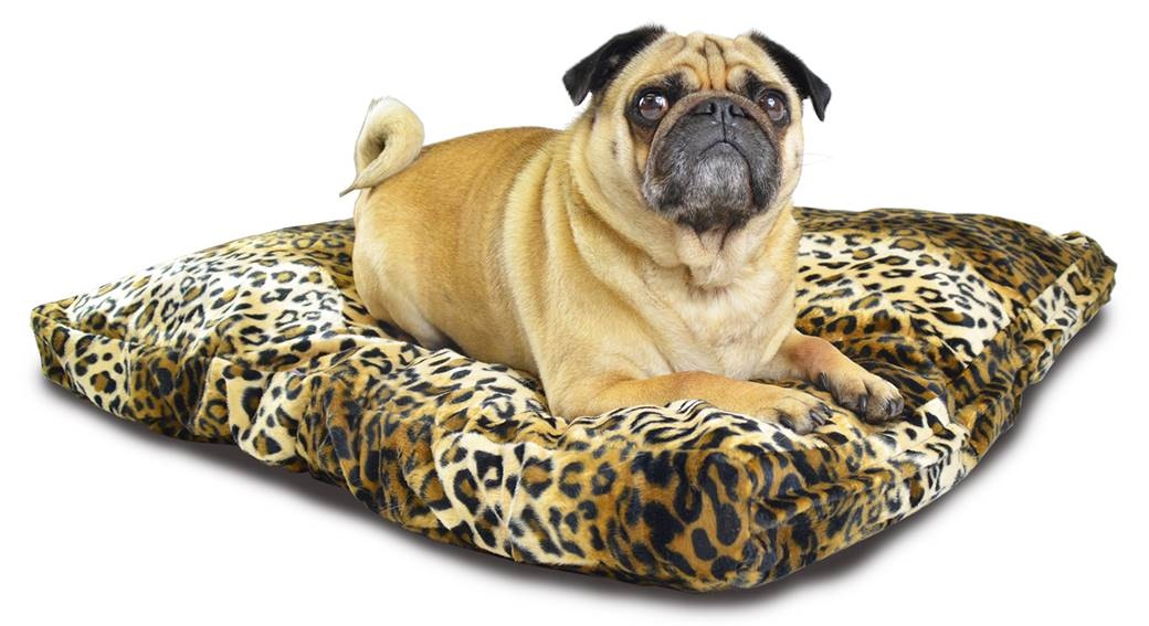 Animal Cusion Brown Leopard 01 New Pet Beds Direct