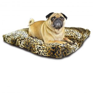 Cushion Beds